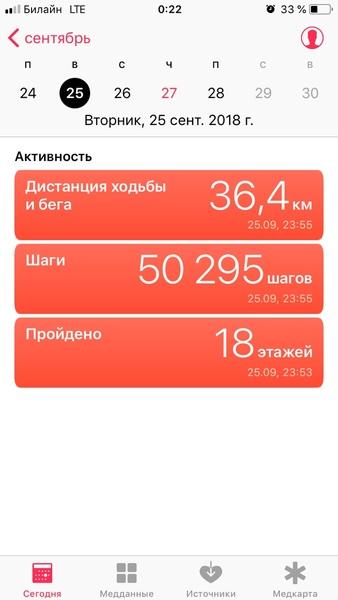 Сколько км в день ты проходила максимум