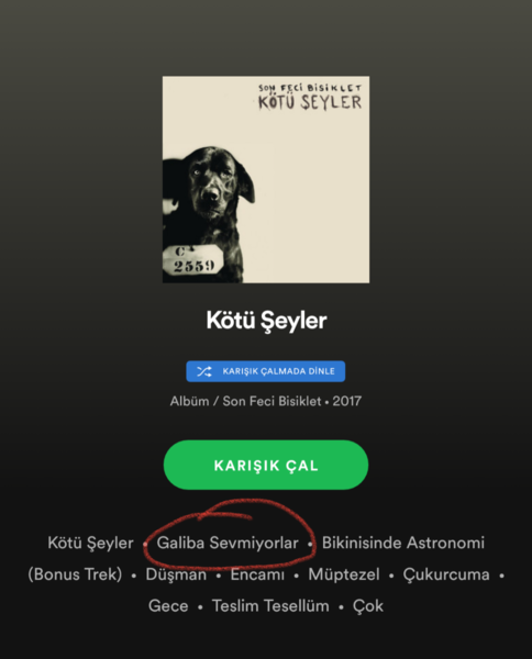 Müzik listende en sevdiğin parça