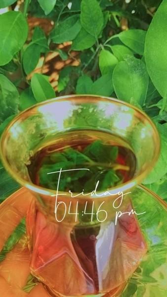 شاي ياريت والسكر بكتفي بعيونك