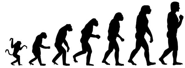 Какой теории происхождения человека ты придерживаешься