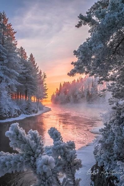 Что любишь больше зиму или лето