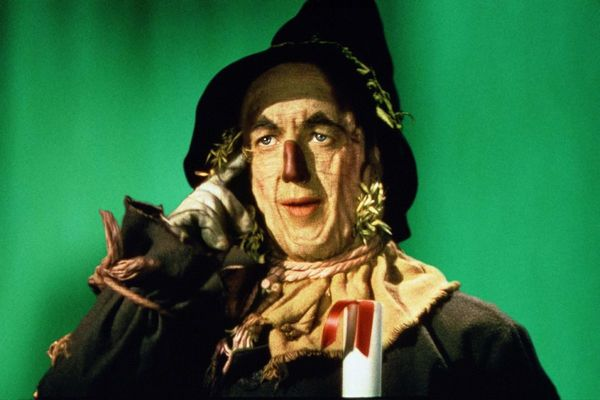 I prefer a brain instead of a heart said the Scarecrow because a fool would not