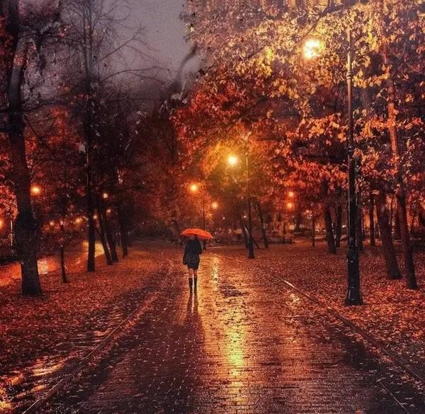 картинка дня  ᴀᴜᴛᴜᴍɴ осень прикрепите картинку гиф фотографию на данную тему