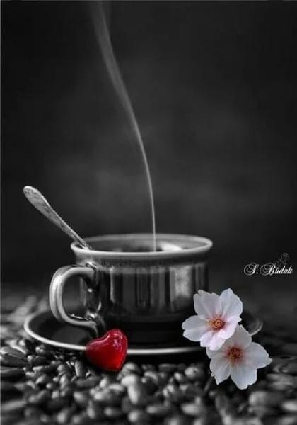 Доброго утра и хорошего дня