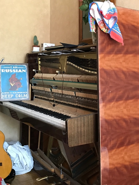 Эй уже прошёл месяц как я ожидаю видео с игрой на пианино одной маэстро с