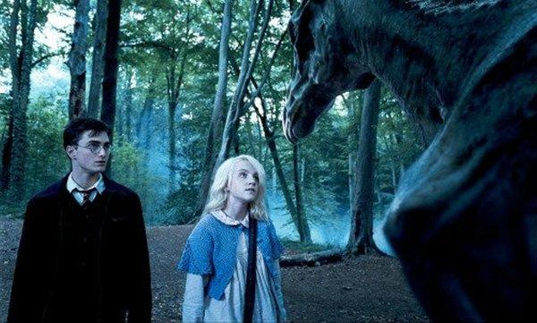 Милая леди есть ли сцены из фильмов про Гарри Поттера которых в книгах не было