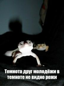 День или ночь