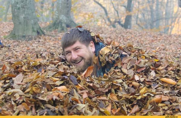 Настроение осень