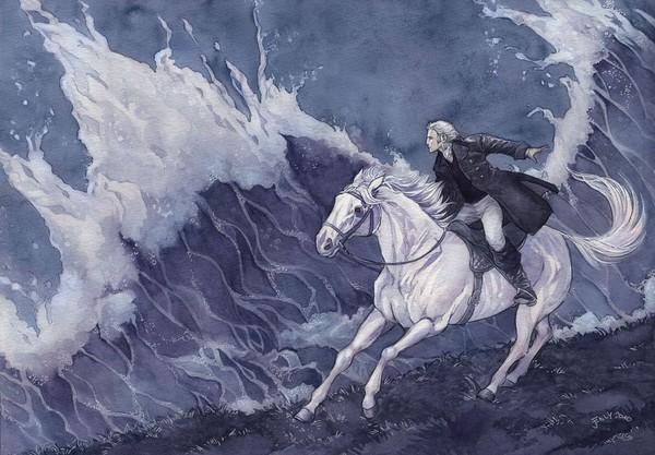 Kennt Ihr das Buch  Der Schimmel reiter von Theodor Storm