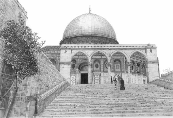 مش شرط أنك تكون فلسطيني عشان تدافع و توقف و تتضامن مع القضية الفلسطينة يكفي انك