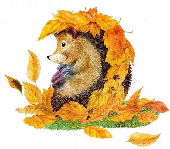 Осень или зима