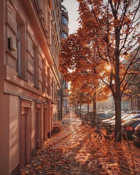 с чем для тебя ассоциируется осень