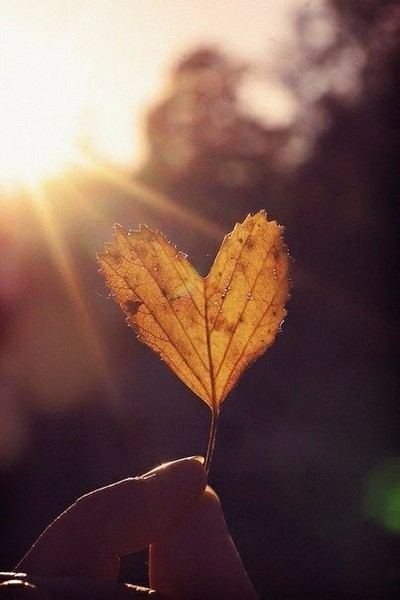 Осень  время грусти и уныния как по мне Ты любишь осень Нравится ли тебе