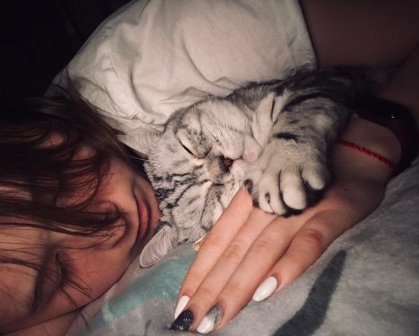 Что делаете с котом