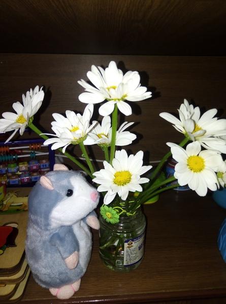 у вас есть любимые цветы если да покажите