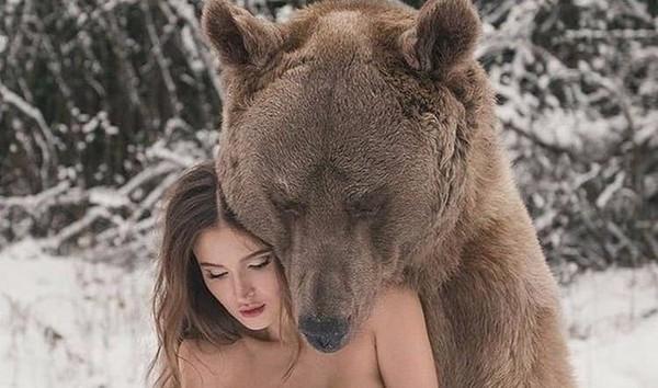 ты в лесу перед тобой препятствие какое выберешь большой злой волк или бурый