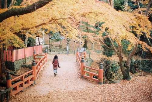 Where there any autumn themed school activities when you were younger