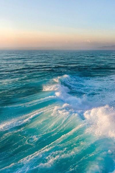 КД  Море