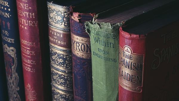 Получила мнение что чтение всякой художественной литературы  это занятие сродни