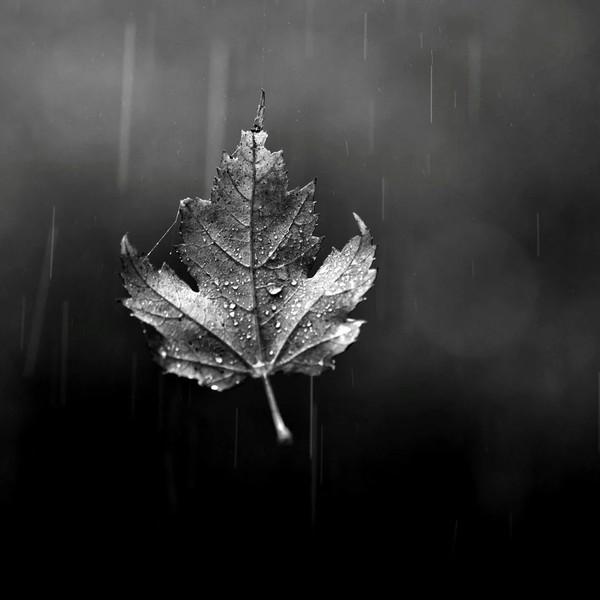 Привет Каждая пора года  это особая своя атмосфера Моя осень  это тепло плед уют