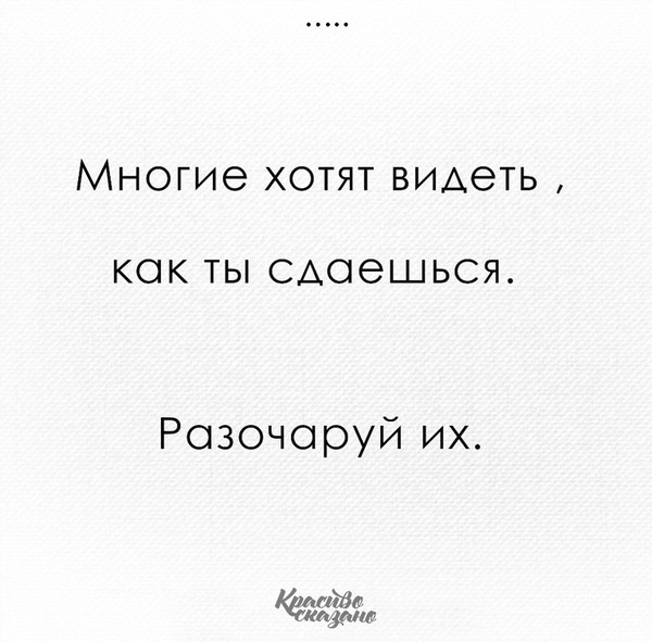 Цитату
