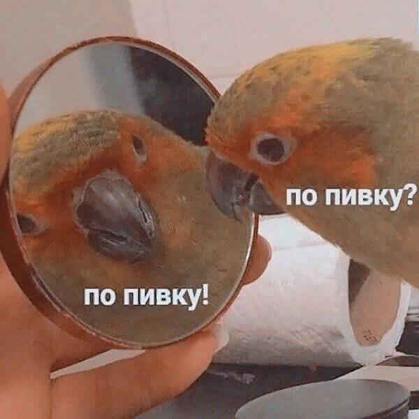 О чём ты думаешь когда смотришь в зеркало
