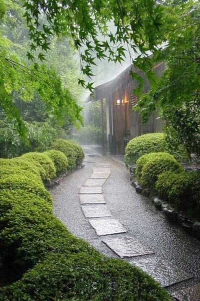 autumn leaves ВД Дождь Любите ли вы дождь Что нравится делать в дождливую погоду