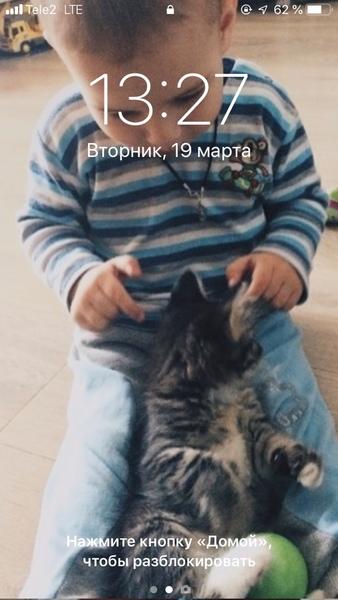 Заставка телефона