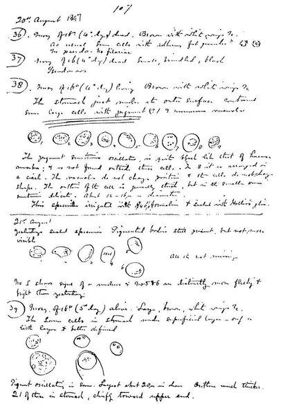 عام  اكتشف رونالد روس العلاقة بين البعوض ونقل طفيليات الملاريا وكتب في ملاحظاته