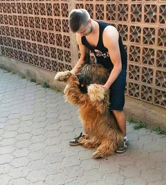 Zazdroszczę takie cudownego kochanego psiaka