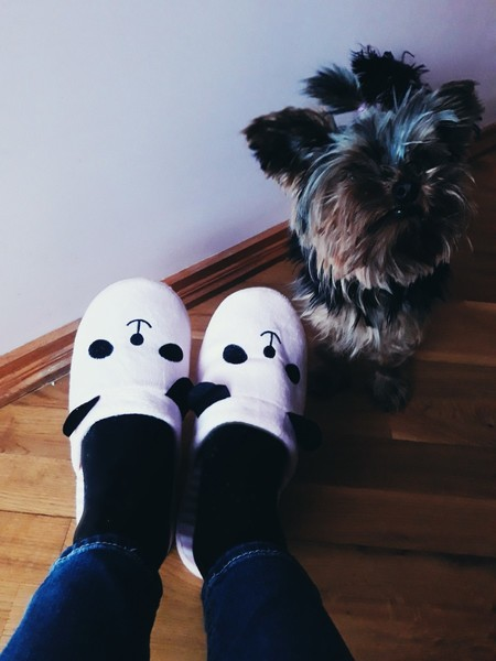 Какого цвета носки на тебе сейчас надеты