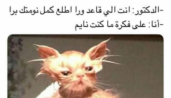 مـسآحهہ