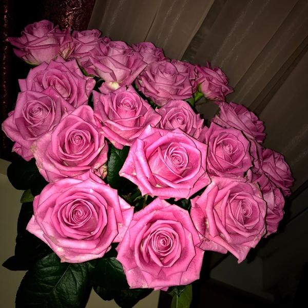 Какие цветы любишь Когда в последний раз дарили