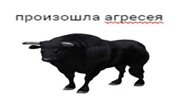 Данил козёл