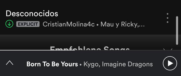 screen von den letzten Songs die du in Spotify gespeichert hast
