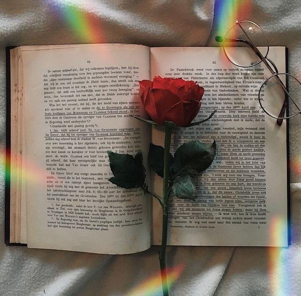 Lubisz czytać książki jeśli tak to jakie
