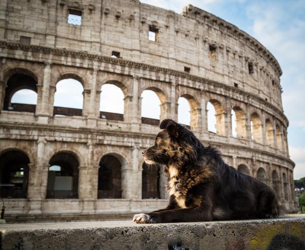 Buongiorno primo stato Italia primo monumento COLOSSEO