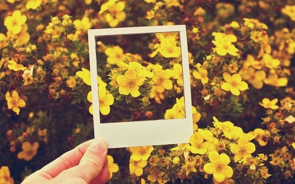 Прикрепи картинку жёлтого  цвета