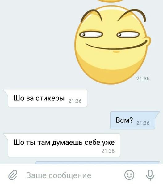 Шипшип