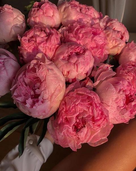 Какие цветы любишь