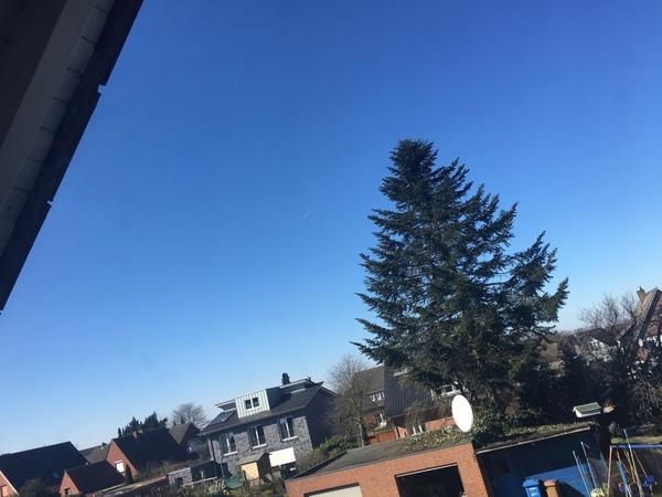 Poste ein Foto von dem Blick aus deinem Fenster und teile es
