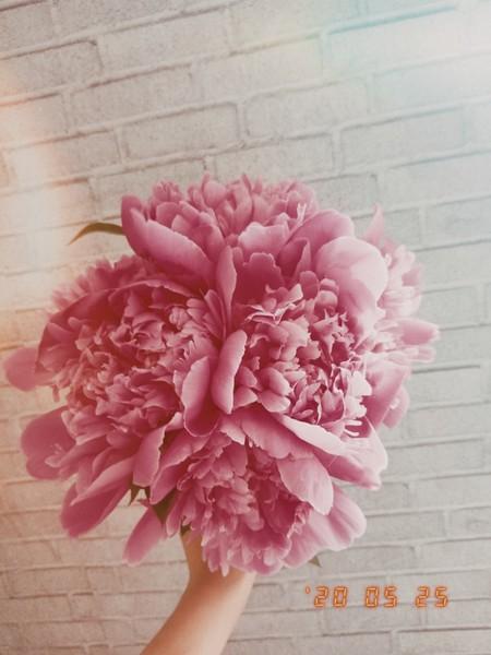 Когда тебе последний раз цветы дарили