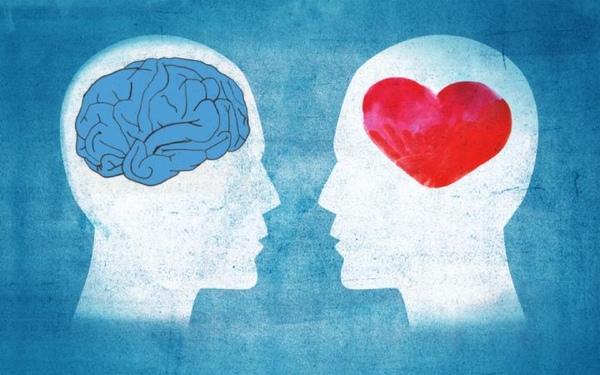 Мозг или сердце