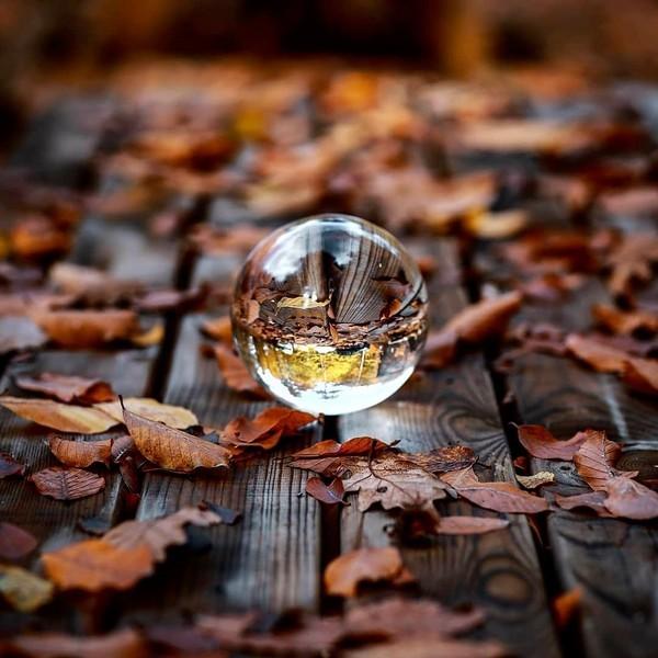 Мое любимое время года никогда не сменит своего имени Осень лишь раз в году и