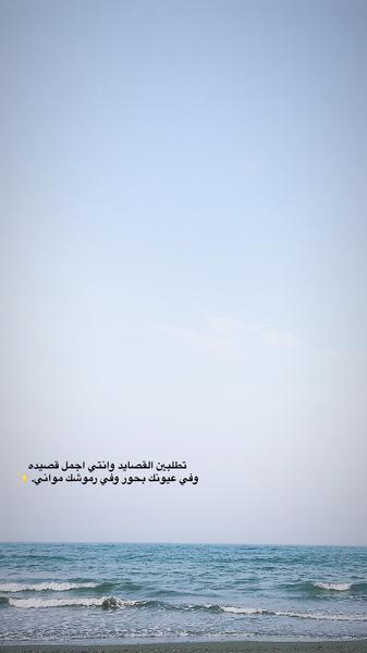 صورة سنابيـــه