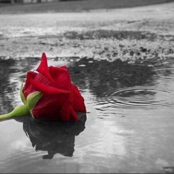 يا رب عندما تنتهي حياتي أجعلني ذكرى جميله لمن عرفني