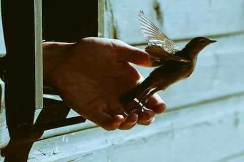 يا رب من كانت له عندك دعوة  امنية  حاجة  و لك فيها رضى فبشر قلبه بها و أسعده بها