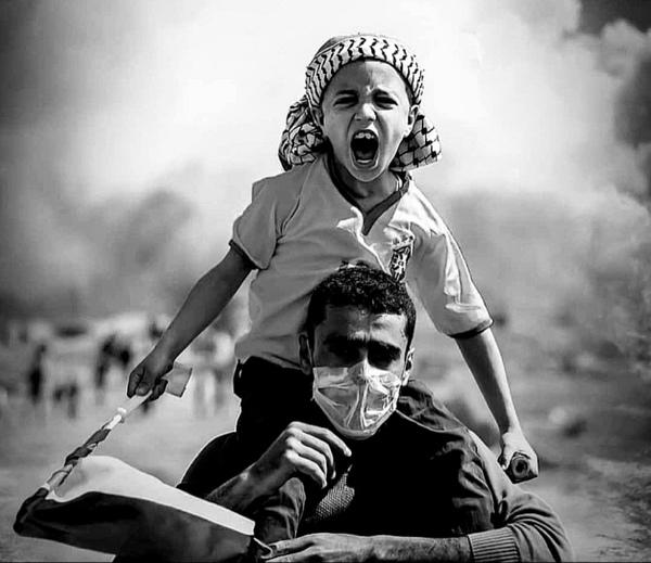 غرد أحد المستوطنون قائلا  الفلسطينيون يحبون أراضيهم ومستعدون للموت  أما نحن