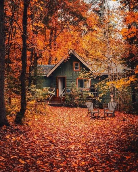 Ako by vyzeralo tvoje ideálne miesto na žite