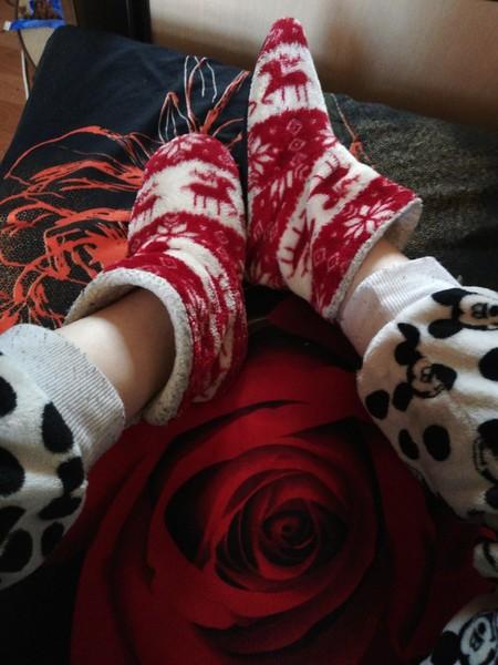Какого цвета носки на тебе сейчас надеты Фото